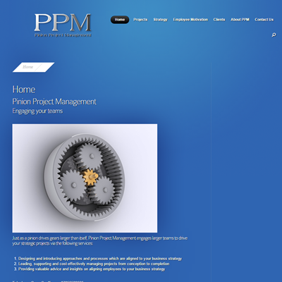 Pinion Project Management
