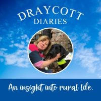Draycottt Diaries Podcast